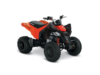 Can-Am DS 250 '21